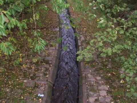 Burnley river raceway - Ribble Rivers Trust