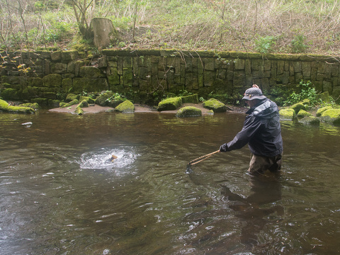 Adrian fighting trout