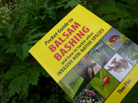 Pocket Guide to Balsam Bashing