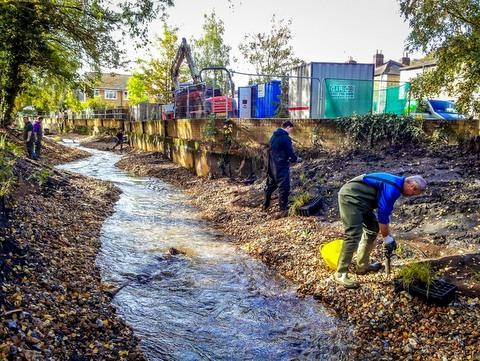 Upper Wandle planting - Wandle Trust
