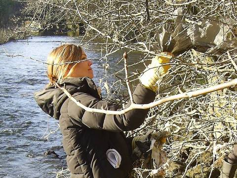 River Kelvin cleanup Jan 2015 - FORK
