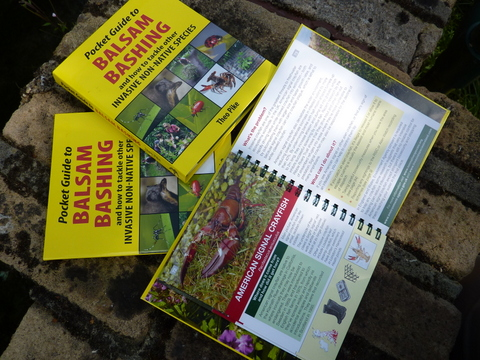 Pocket Guide to Balsam Bashing 2