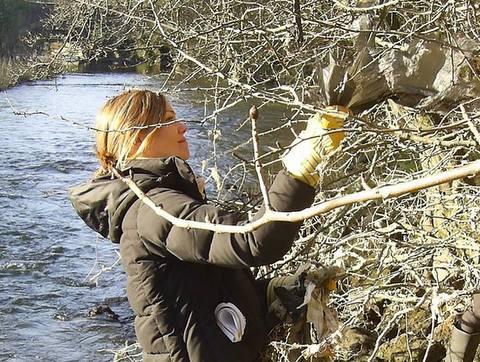 River Kelvin cleanup Jan 2015 - FORK