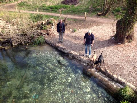 New dog access at Watermills Park - Aquamaintain