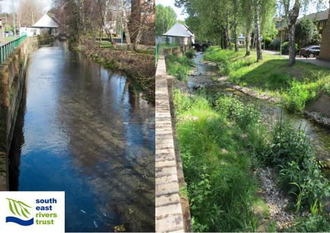 Before and after - upper Wandle - SERT